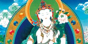 照光寺の寺宝・仏画